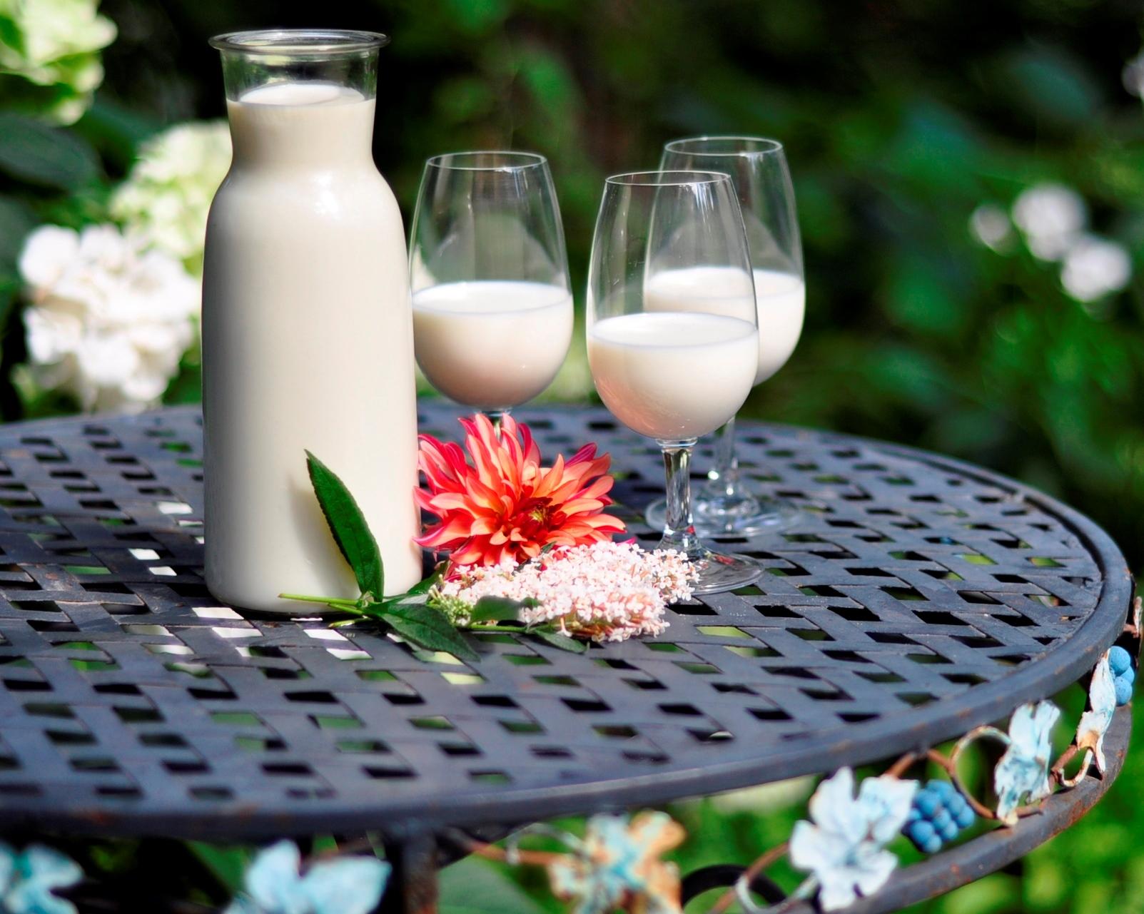 Milch-Tasting
